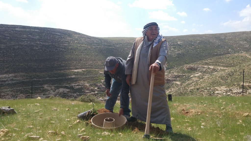 Palestine Hebron Cocoon